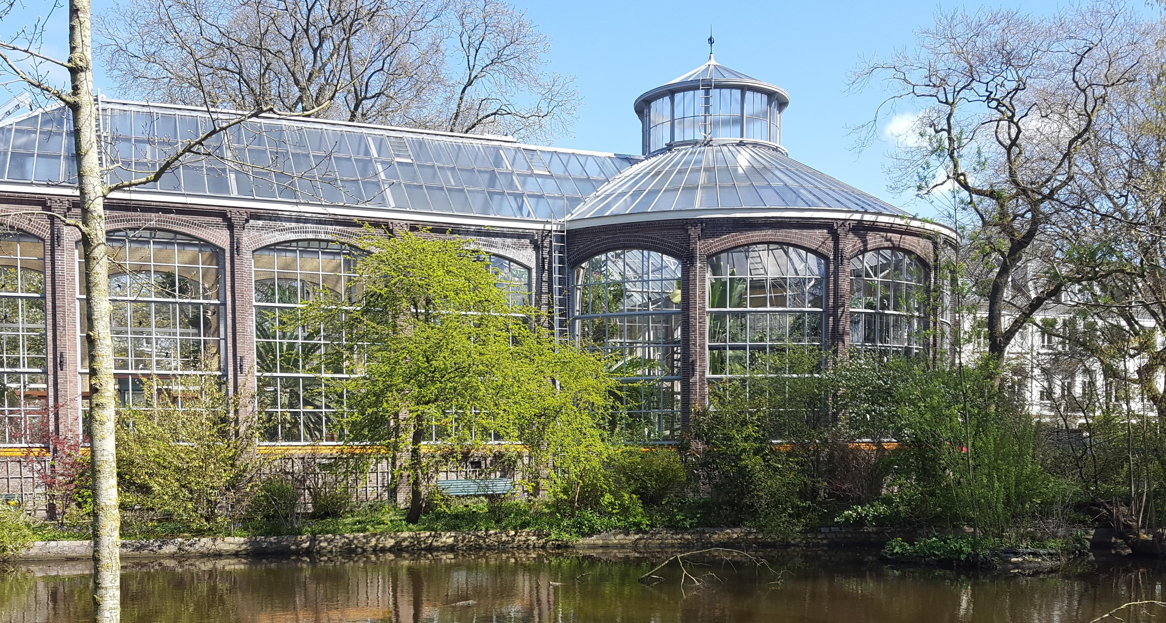 Botanische Tuin Amsterdam : Beautiful year old botanic garden amsterdam ⋆ dailygreenspiration